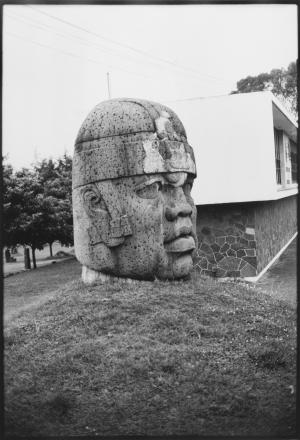Cabeza Colosal Antiguo Museo