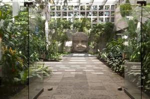 Un Nuevo Museo Pergola