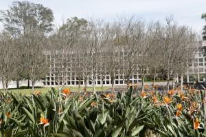 Un Nuevo Museo Jardines