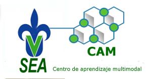 Editado en el Centro de aprendizaje multimodal  del Sistema de Enseñanza Abierta