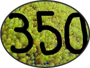 pico350_1