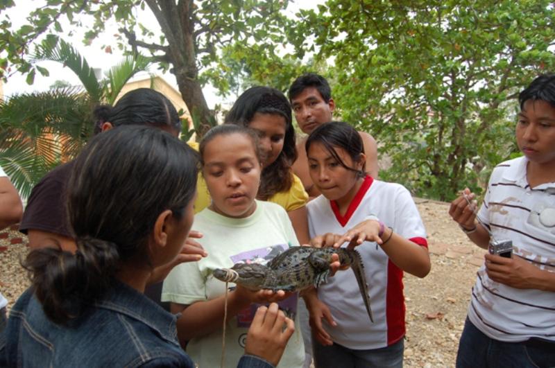 En Quetzalli se resguardan temporalmente animales silvestres incautados