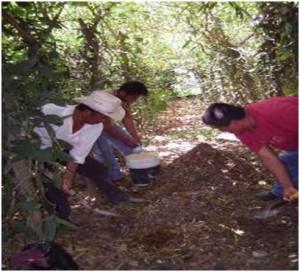 Taller donde se elaboró un abono orgánico llamado bocashi (Foto: Liliana López)