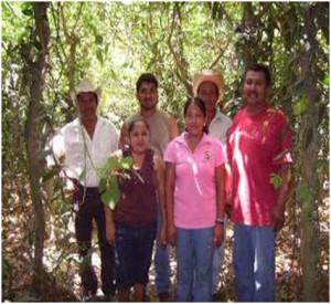 Los Vainilleros de la comunidad de Paso de Valencia (Foto: Liliana López)