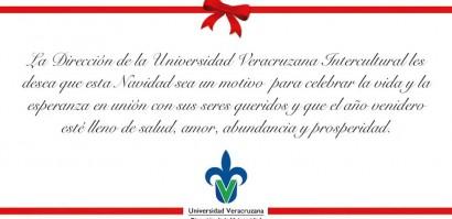 DUVI_FelizNavidad_2012