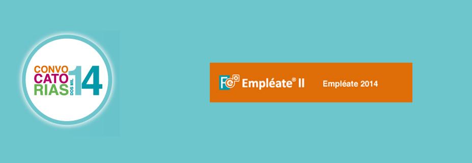 resumen-becas-fese-2014-empleate-ii
