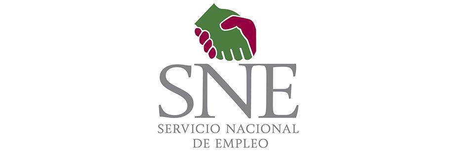 Banner-SNE