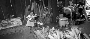 1. En los municpios de Tatahuicapan y Soteapan, en Los Tuxtlas, la acumulación de PET es alarmante. Fotografía: Paulo Quintana.
