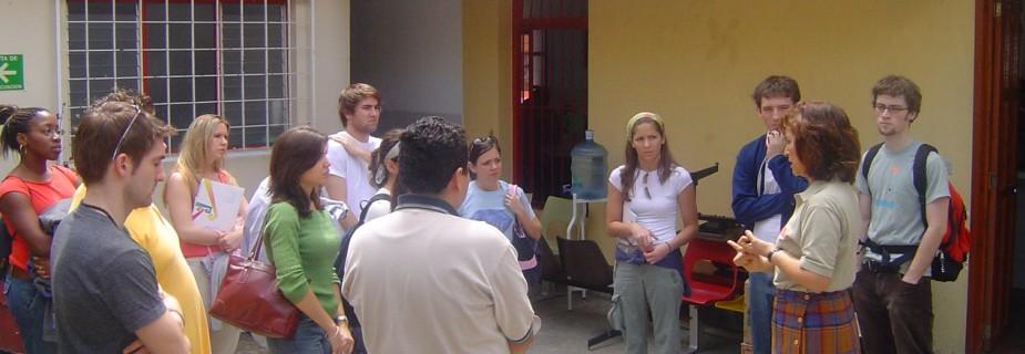 Programa de estudios independientes y practicas