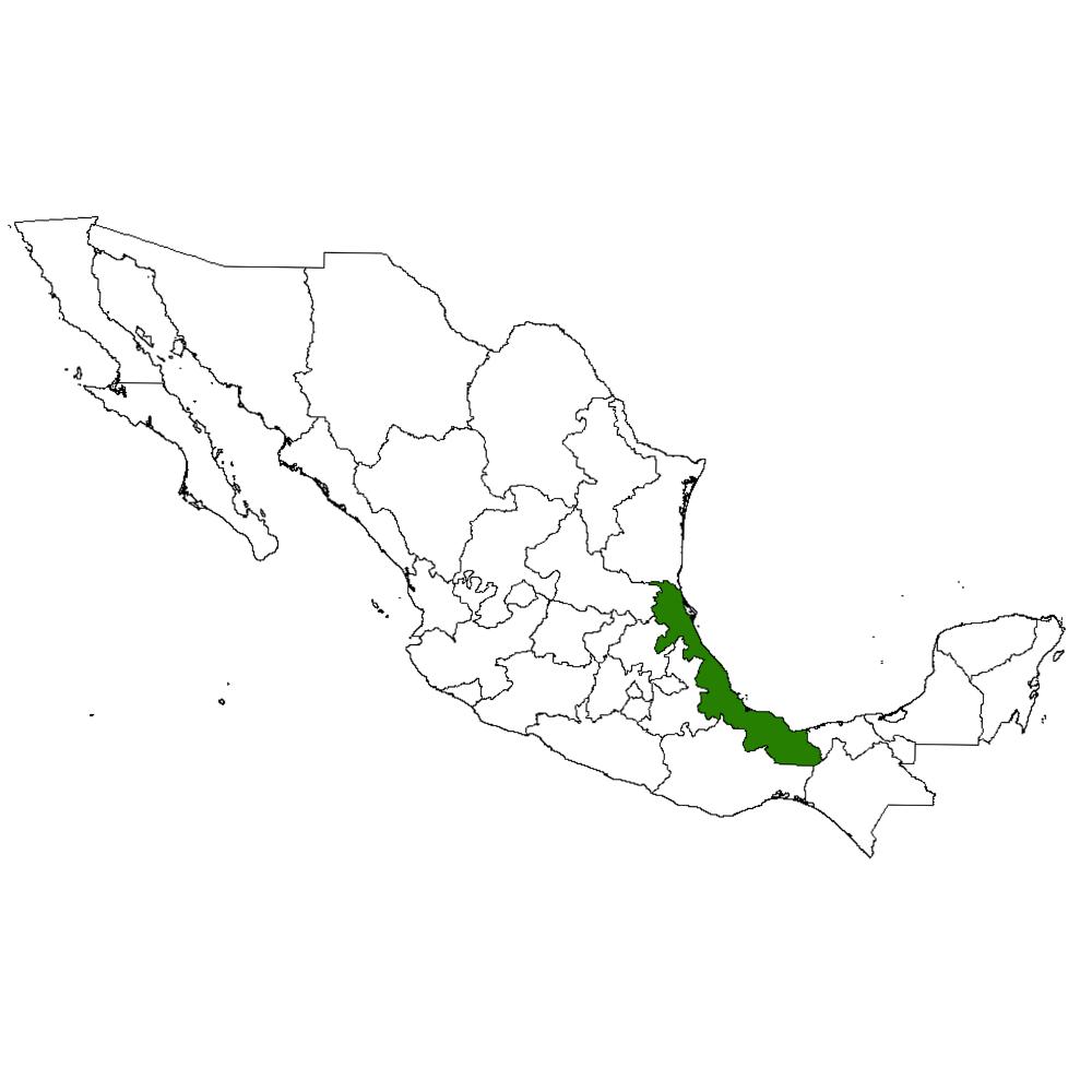 Veracruz en la república mexicana