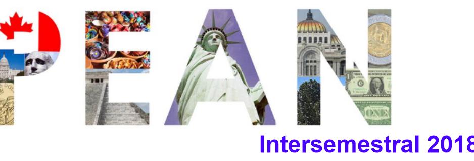 Banner: PEAN intersemestral 2018