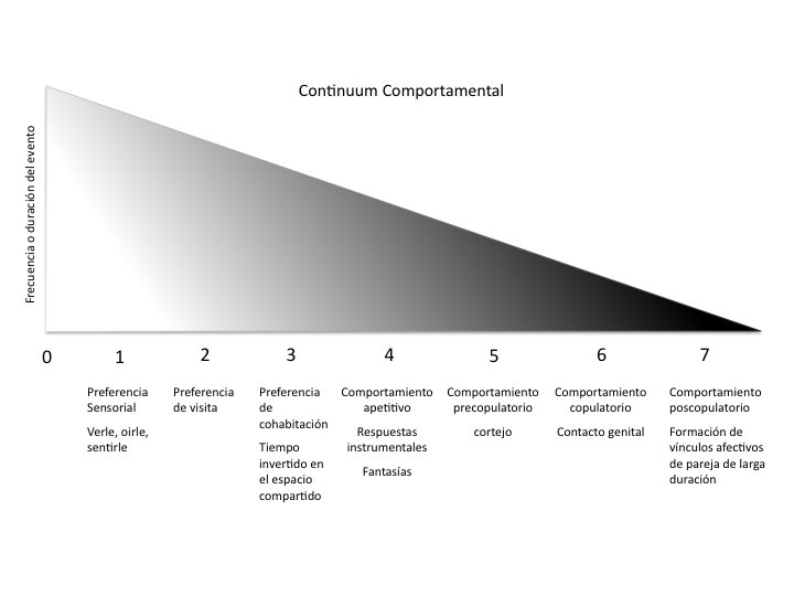 continuum comportamental