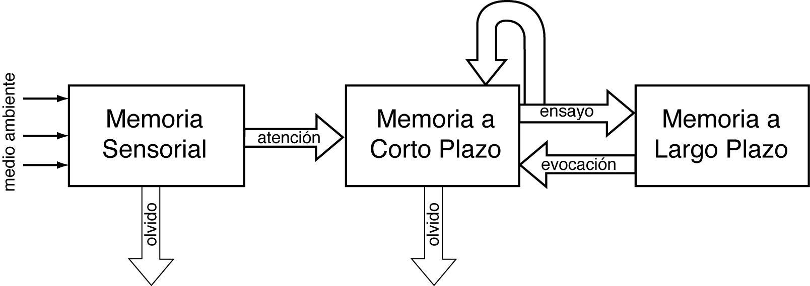 Neuropsicologia e modelos psicológicos nas dificuldades de aprendizagem 10