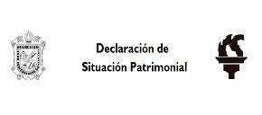 Declaración de Situación Patrimonial