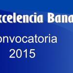 jovenes-excelencia-banamex-2015