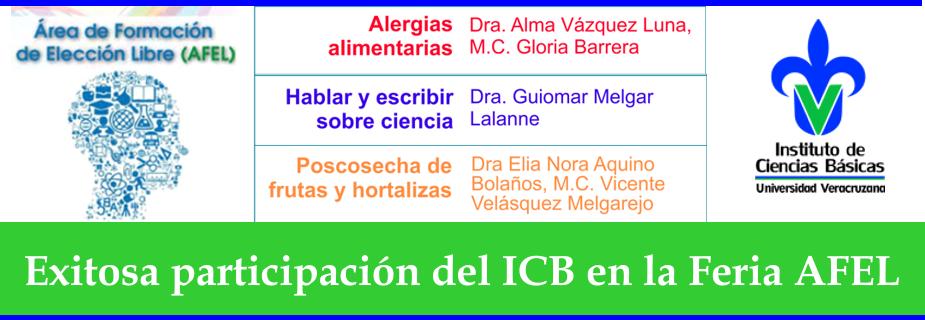 banner-icb-afel