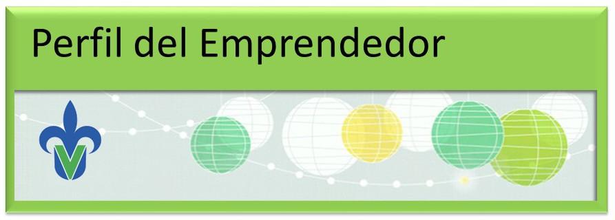 EncuestaEmprendedor 02