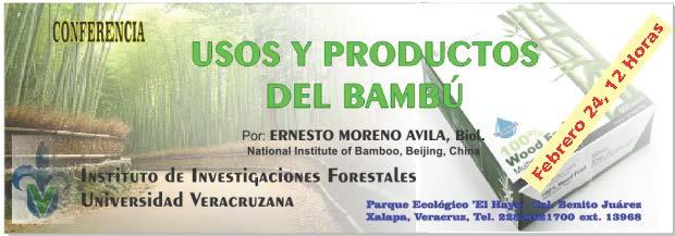 Bamboo-ban1