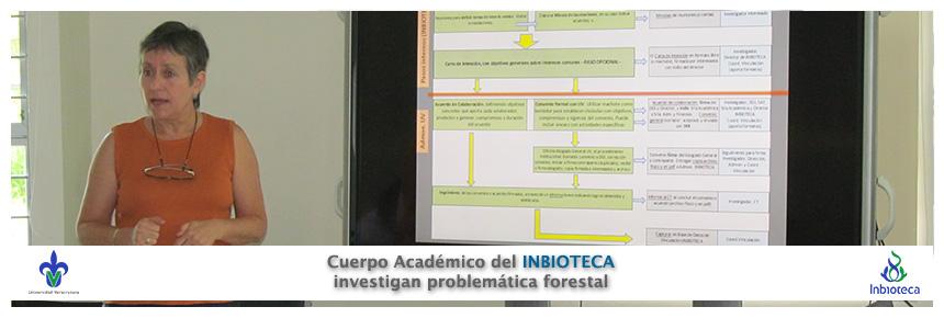 150420-ProblemaForestal
