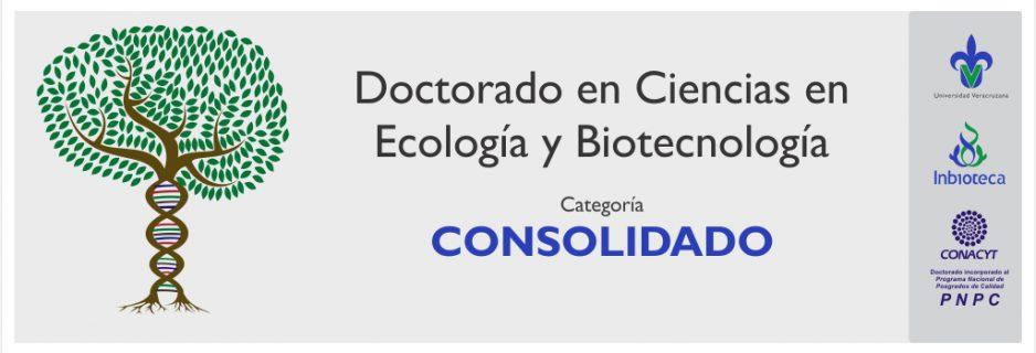 Banner_DCEB_Consolidado