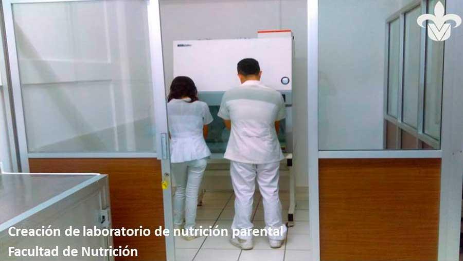 Nutricion-VIII