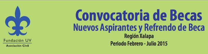 banner-becas-fundacion-uv-feb-2015