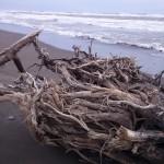 Playa Boca de Ovejas. Fotografía Federico Colin