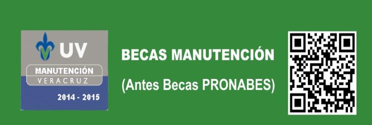 becas-manutencion4