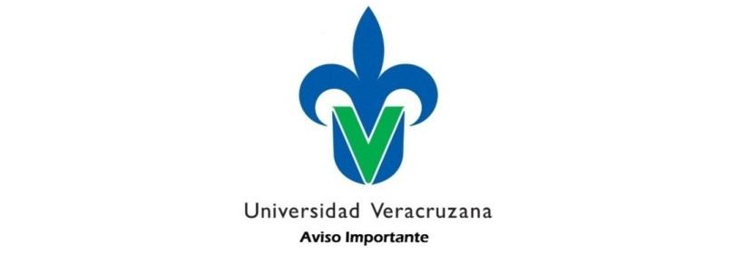 ELEMENTOS BASICOS  DE IDENTIDAD