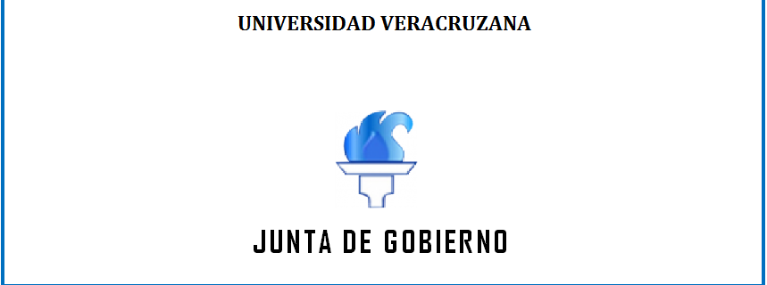 Junta Gobierno slaye