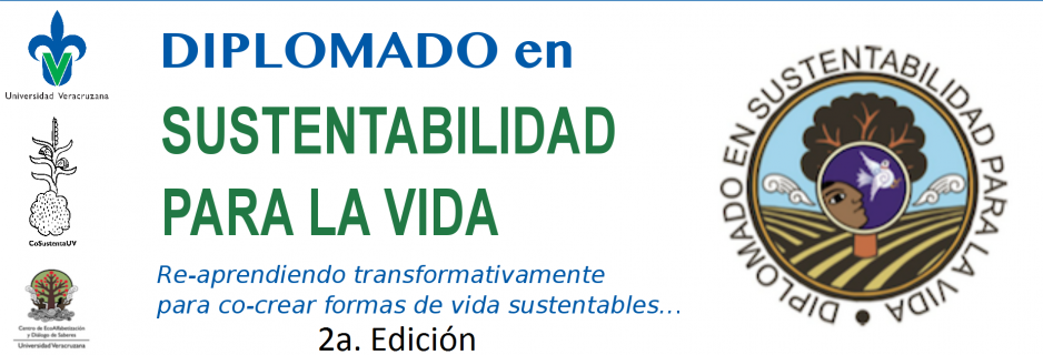 Banner-Diplomado-938x320