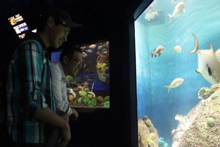 Federico junto al profesor Gerardo, disfrutando de las especies exhibidas en el acuario