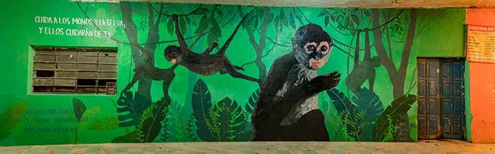 """""""Cuida a los monos y la selva; ellos cuidarán de ti"""", es el mensaje del mural (Foto Rodrigo Alberto Martínez Martínez)"""