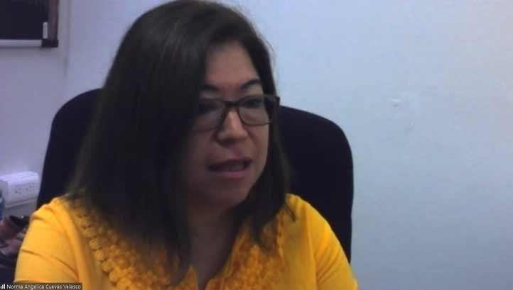 Norma Angélica Cuevas Velasco, secretaria Ejecutiva del Consejo Consultivo de Cátedras de Excelencia UV