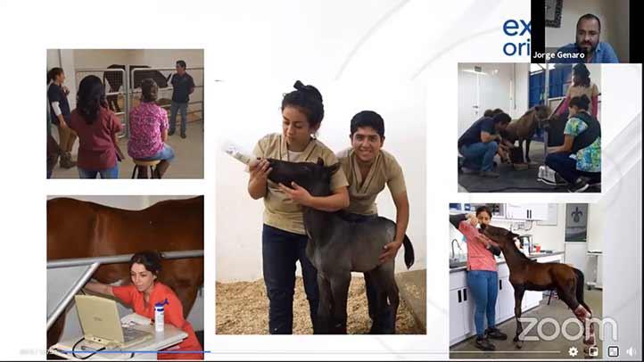 La Facultad de Veterinaria cuenta con un rancho escuela para capacitar a sus alumnos