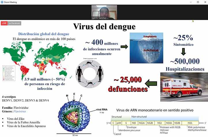 Anualmente ocurren 400 millones de infecciones por dengue en el mundo