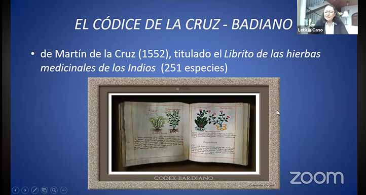 Leticia Cano mostró la primera imagen registrada de la vainilla por su uso medicinal