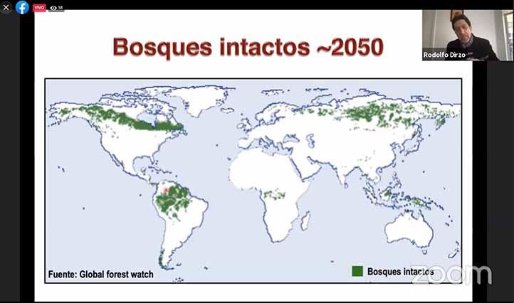 Destacó que la deforestación representa una gran amenaza para la biodiversidad de México y Latinoamérica