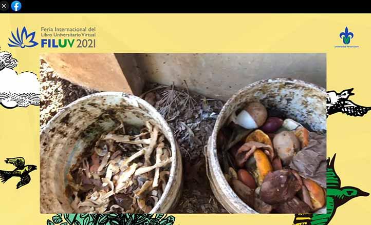 Los residuos orgánicos son de gran utilidad para los huertos caseros