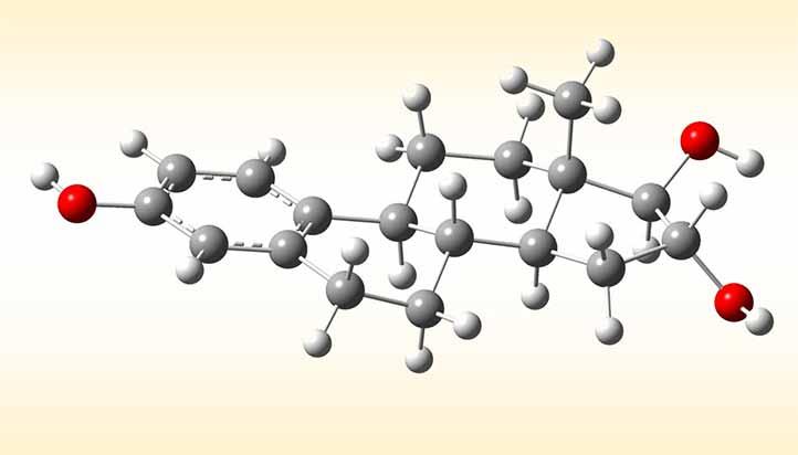 El estriol es un estrógeno considerado en este proyecto