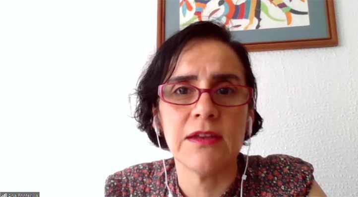 Ana Isabel Fontecilla Carbonell, investigadora del IIH-S