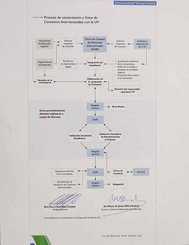 El procedimiento se presenta como un diagrama de flujo que ya está disponible en el portal oficial de la DGRI: https://www.uv.mx/internacional/
