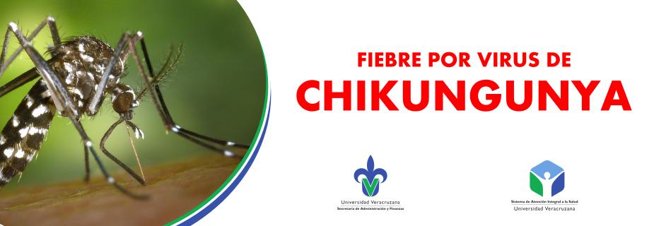 Banner Chicungunya (2)