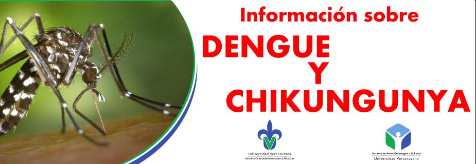 Banner Chicungunya
