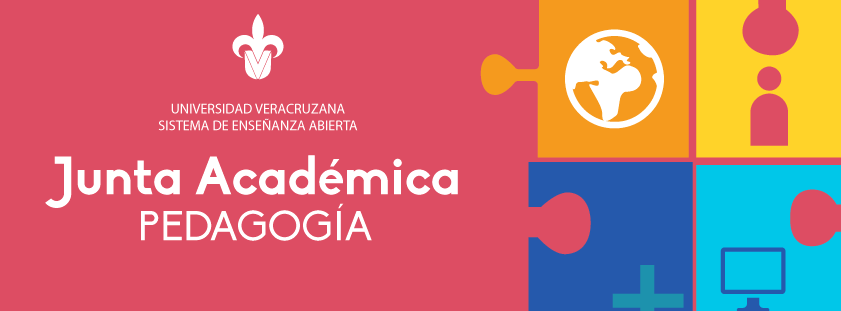 Junta Académica - SEA Pedagogía