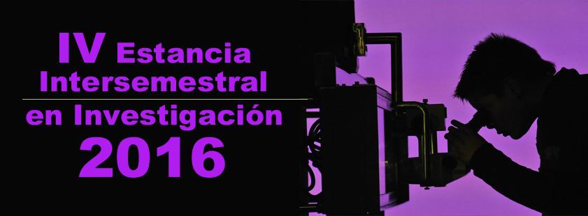 IV programa de Estancias Intersemestrales de Investigación de la Universidad Veracruzana