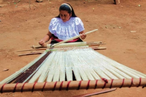Las tejedoras tienen la capacidad para transformar su entorno