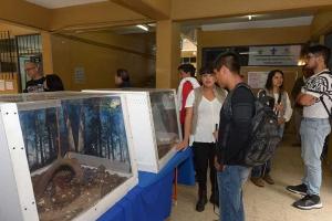 Expusieron ejemplares que alberga el herpetario de Biología
