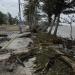 La acción global permitirá enfrentarlo y prepararse para sus efectos catastróficos