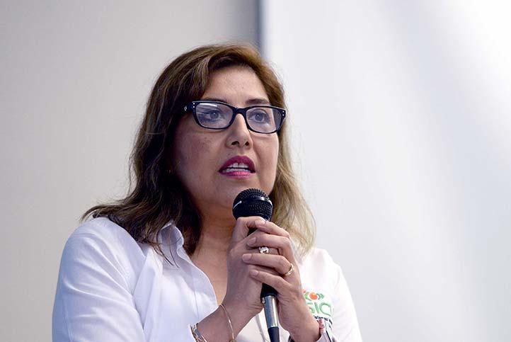 María del Carmen Mezura Godoy, coordinadora del posgrado